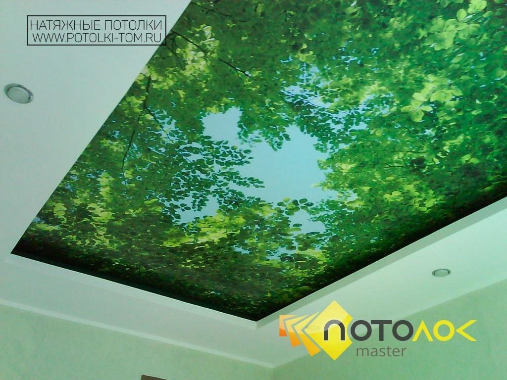 Натяжные потолки фотопечать фото
